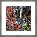 Fall Scene At Lost Maples Framed Print