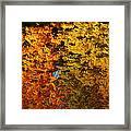 Fall Textures In Water Framed Print by LeeAnn McLaneGoetz McLaneGoetzStudioLLCcom