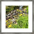 Falls To The Flowers Framed Print