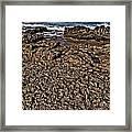 Famara Framed Print
