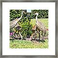 Family Meal Time Framed Print