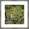 Farm Mower 1 Framed Print