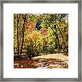 Fenced Path Through Autumn Forest - Blacksmith Fork Canyon - Utah Framed Print
