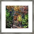 Fire's Creek Bridge Framed Print