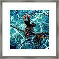 Fish Knot Santorini Greece Framed Print