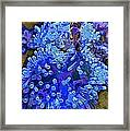 Fishie And The Sea Anemone Framed Print