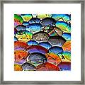 Fishy Bubbles Framed Print