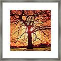 Flaming Oak Framed Print