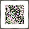 Fleurs De Nuit Framed Print