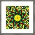 Floral Fantasy 071311 Framed Print