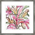 Floral Fourteen Framed Print