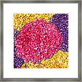Flower Carpet Framed Print