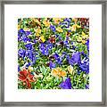 Flower Palette Framed Print