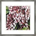 Flowers - 0055 Framed Print