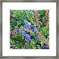 Flowers Galore Framed Print