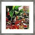Flowers On Porch - 2 Framed Print