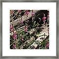 Flowery Log Framed Print