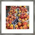 Food - Harvested Peaches Framed Print