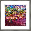 Forest Color Leaves Framed Print