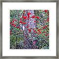 Forest Flowers Bhuping Palace Framed Print