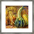Four Gourds Framed Print