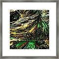 Fractal - Weed Framed Print