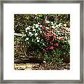 Free To Bloom Framed Print