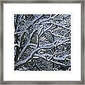 Fresh Snowfall Blankets Tree Branches Framed Print