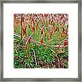 Fruiting Moss - Red And Green Tableau Framed Print