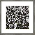 Full Frame Alabama Cotton Crop Framed Print