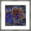 Gamma Ray Burst Framed Print by Samuel Sheats