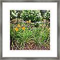 Garden Delight Framed Print