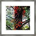 Garland Of Autumn Framed Print