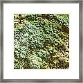 Geothermally Active Area Framed Print