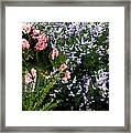 Geranium And Lilac Painting Framed Print