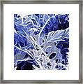 Ghost Leaves Framed Print