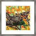 Glorious Grasshopper Framed Print