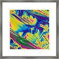 Glutamine Framed Print by Michael W. Davidson