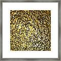 Golden Ice Crystals Framed Print