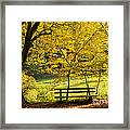 Golden October - Bench And Yellow Trees In Fall Framed Print