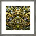 Golden Rorschach Framed Print