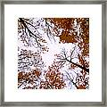 Golden September ... Framed Print
