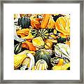 Gourds And Squash Framed Print