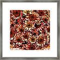 Graphic Dasies Framed Print