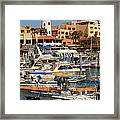 Harbor Waterfront In Cabo San Lucas Framed Print