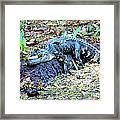 Hard Day In The Swamp - Digital Art Framed Print