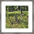 Hay Cutter 2 Framed Print