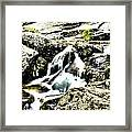 Hdr Stream Framed Print