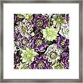 Hellebore Helleborus Sp Flowers Framed Print