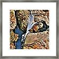 Hidden Images Vert Framed Print